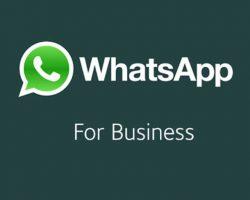 ¿Tenés una empresa? Whatsapp Business ya disponible oficialmente para Android