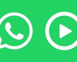 Youtube | WhatsApp: videos en YouTube sin salir de la app